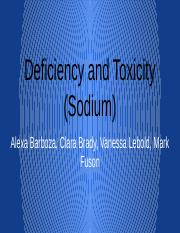 deficiency and toxicity powerpoint word presentation.docx.pptx