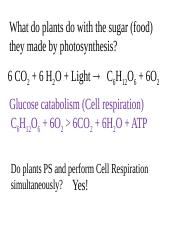 Cell respiration2
