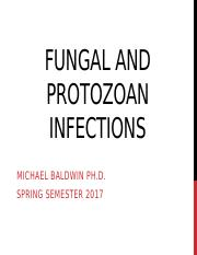 Fungal and protozoan infections_SP2017 (1)