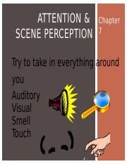 06_Chapter 7_Attention & Scene Perception_Student.pptx