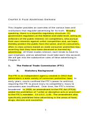 Chapter 3 False Advertising Overview DOC kim.doc