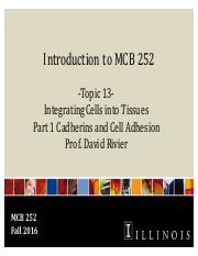 MCB 252 Topic 13 Integrating Cells into Tissues- Cell Adhesion Fa16.pdf