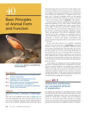 40-Basic Principles of Animal Form and Function(1).pdf