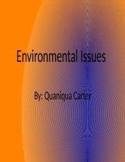 Environmental Issues.pptx