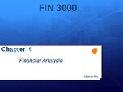 Chapter 4 Financial Analysis