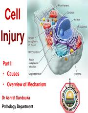 Cell injury Part I