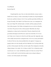 Reflection paper Illegal Immigration Essay