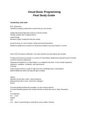 Copy of Visual Basic Programming Final Study Guide(副本).docx