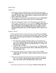 3 pages ap lang scarlett letter ch 14 20 questions