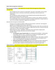 BFF 5902 Week 3 Risk management architecture.docx
