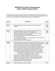 MGMT303 swot analysis