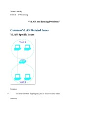 VLAN and Routing Problems.docx