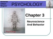 Chapter 3 _ Neuropsychology