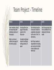 Team Project Timeline