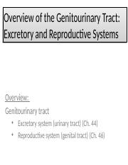 Genitourinary Tract(1)