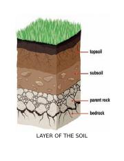 LAYER-OF-THE-SOIL.docx