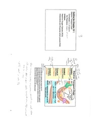 CH 460 Chapter 10-Electron Transport Chain and Oxidative Phosphorylation Outline and Notes