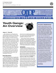 Youth and gangs essay