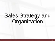 Day 6 - Sales Strategy and Organization