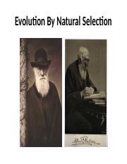 Evolution by natural selection.pptx