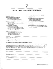 chapter 7 how cells acquire energy study guide