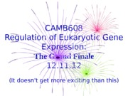 finale CAMB608