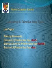 Lab Experience. Chapter 8. Primitive Data Types
