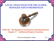 Chapter17 Legal Challenges