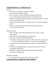 Action Plan and Reflection Sheet