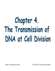 L4_Transmission of DNA.pdf