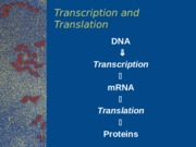 Lecture 6: Transcription and Translation