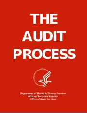 Audit Process - How to.pdf