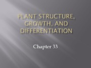 chapter33 plant development and anatomy