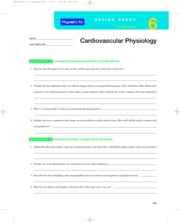 physioex exercise 6 cardiovascular physiology Free essay: review sheet exercise 6 cardiovascular physiology name: lab time/date: 1 between the phases of 0-35, while the relative refractory period is the time in which the cell is making preparations to receive stimulus between phase 35-4.