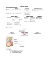 1 Endocrine Anatomy