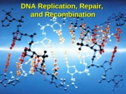 DNA-Replic-Recomb-Repair