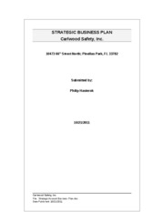 Strategic Business Plan - Final Phase