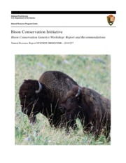 Bison_Genetics_Report