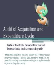 Audit of Acquisition and Expenditure Cycle.pptx