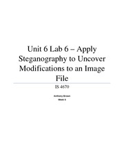Unit 6 Lab 6 - Apply Steganography to Uncover Modifications to an Image File