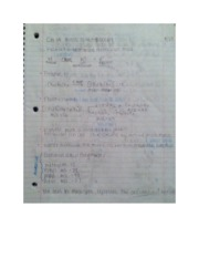 Ch 14 Notes