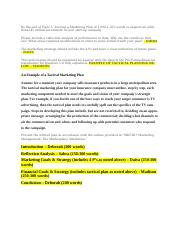 Week 5 Marketing Plan Paper - Outline.docx