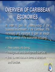 Caribbean Perspective .pdf