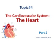 (6) ANP 1105 The heart, part 2 2015 JK.ppt WEBSITE