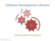 20110105 Software Development Lifecycle
