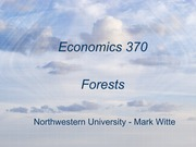 Economics 370 - Forests