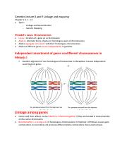 Genetics lecture 8 linkage and mapping.docx