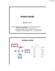 Chapter 4 Amino Acids.pdf