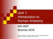 KIN3027 S15 Introduction to Human Anatomy 2015