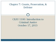 Chapter+7_PPT_CRJU1100_SW